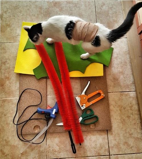kedi kaşıma malzemeleri