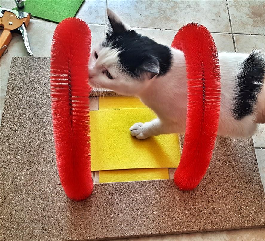 Kedi tırmalama oyuncağı nasıl yapılır
